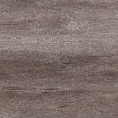 8 x 48 x 12.3mm  Laminate Flooring in Rio (Set of 22)