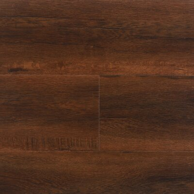 8 x 48 x 12.3mm  Laminate Flooring in Havana (Set of 22)