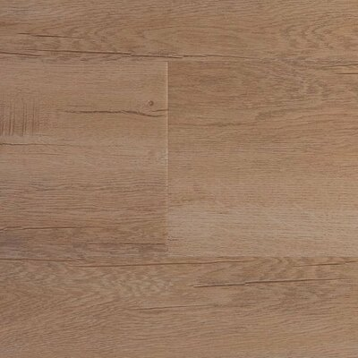 8 x 48 x 12.3mm  Laminate Flooring in Ibiza (Set of 22)