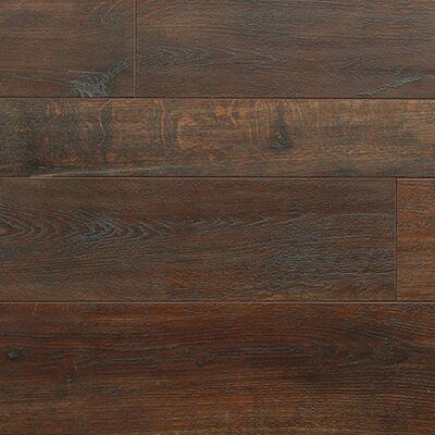 Tatum 3 x 49 x 12.4mm Plank Laminate in Amarone