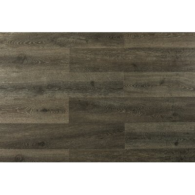 Augustus 7.71 x 72.83 x 12mm Laminate Flooring in Pitch Amber