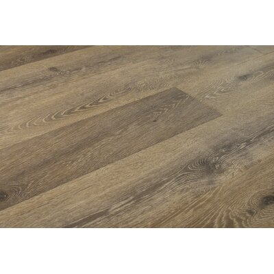 Augustus 7.71 x 72.83 x 12mm Laminate Flooring in Simply Taupe
