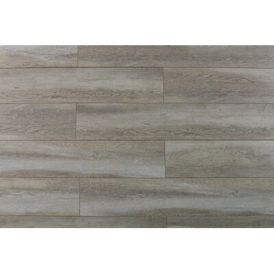 Abdiel Arjuna 7.72 x 47.83 x 12.3mm Laminate Flooring in Brown