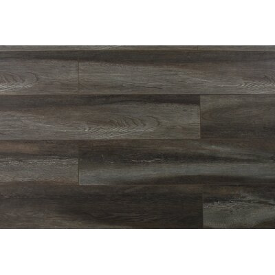 Abdiel Shinta 7.72 x 47.83 x 12.3mm Laminate Flooring in Gray/Brown