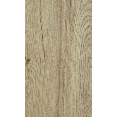 Nature Creations Plus 7 x 49 x 0.55mm Luxury Vinyl Plank in Texas