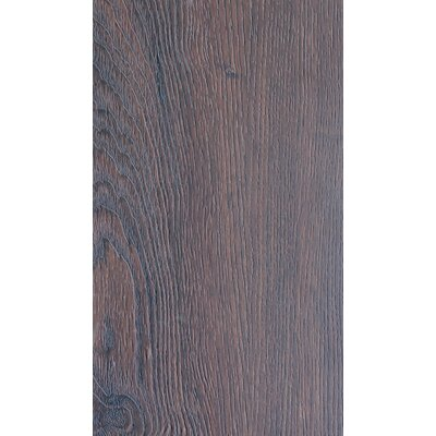 Nature Creations Plus 7 x 49 x 0.55mm Luxury Vinyl Plank in Warren