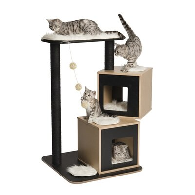 41 Bear Double Cat Tree Color: Black