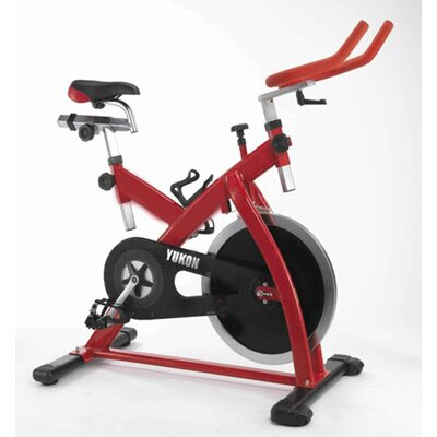 Yukon Fitness Higol Stationary Bike at Sears.com