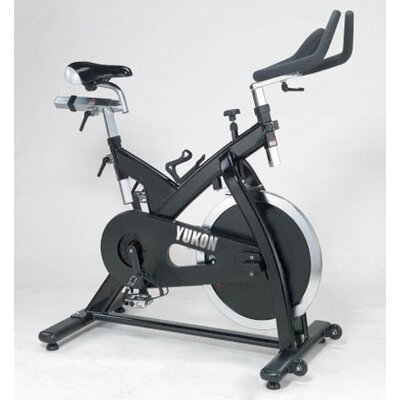 Yukon Fitness Higol Pro Stationary Bike at Sears.com