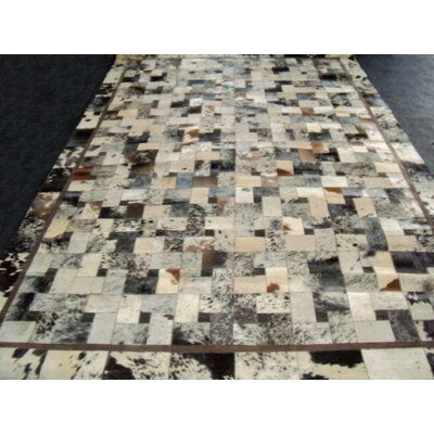 Patchwork Bordered Salt/Pepper Area Rug Rug Size: 4 x 6