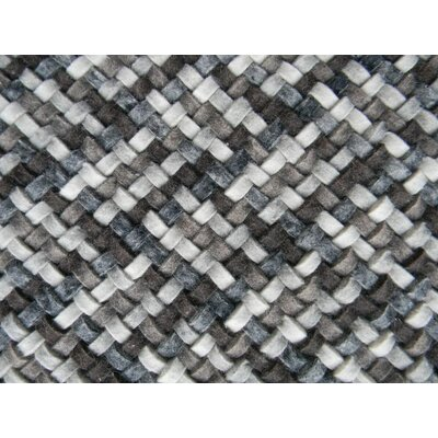 Scales Multi Gray Area Rug Rug Size: 6' x 8'