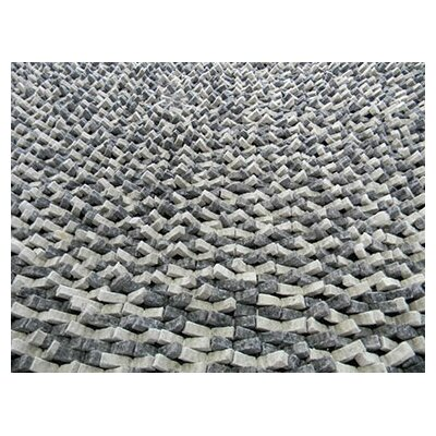 Cobblestone Coal Silver Area Rug Rug Size: Rectangle 6 x 9