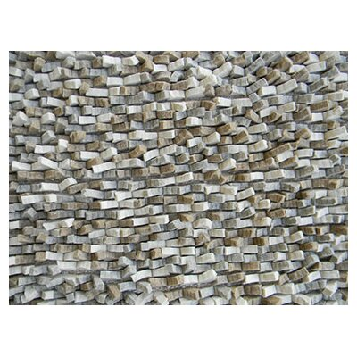 Cobblestone Gray Area Rug Rug Size: Rectangle 5 x 8