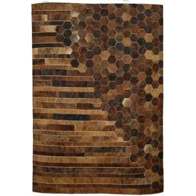 Brown/Tan Area Rug Rug Size: Rectangle 5 x 8
