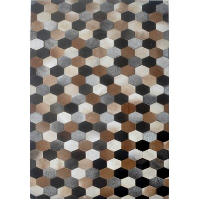 Hand Woven Area Rug Rug Size: Rectangle 6 x 9
