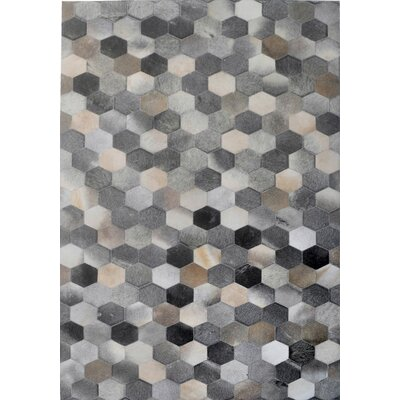 Gray Area Rug Rug Size: Rectangle 6 x 9