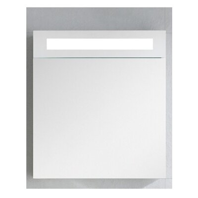 Glenwood 19.63 x 21.63 Surface Mount Medicine Cabinet with Lighting