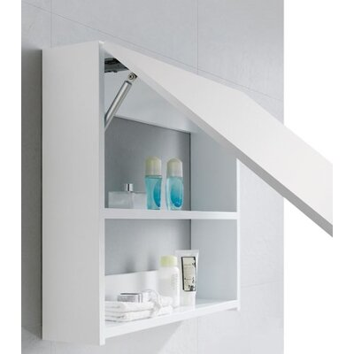 Lexington 23.63 x 21.63 Surface Mount Medicine Cabinet
