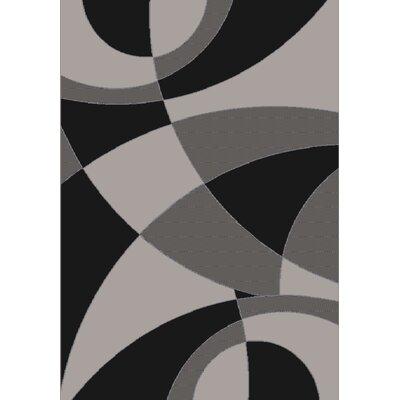Soho Black Area Rug Rug Size: 5 x 7
