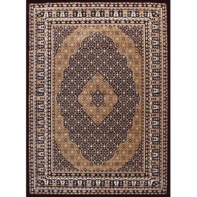 Gulistan Power Loomed Teracotta Area Rug Rug Size: 53 x 72