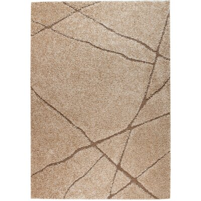 Quaoar Non-shedding Brown Area Rug Rug Size: 4' x 6'