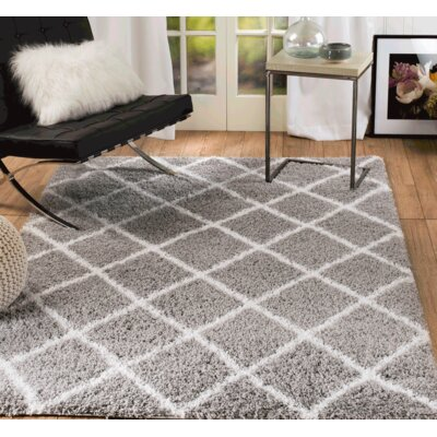 Supreme Shag Gray Area Rug Rug Size: Rectangle 75 x 10