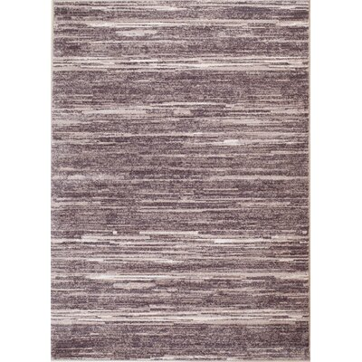 Jenkins Mirage Brown Area Rug Rug Size: 38 x 57