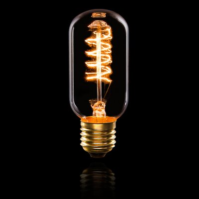40W E26 Edison Light Bulb