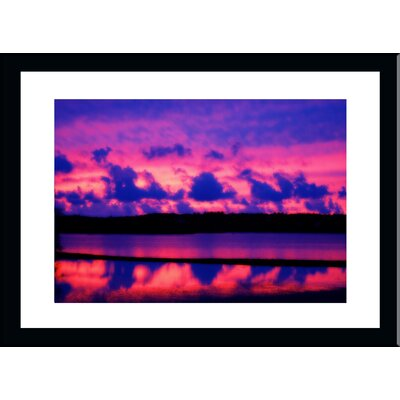 'Cranberry Bog Sunset Cape Cod' by Jobe Waters Framed Photographic Print Size: 18