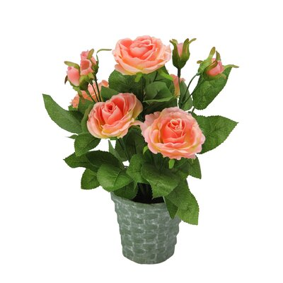Artificial Potted Rose Plant with Greenery Color: Coral