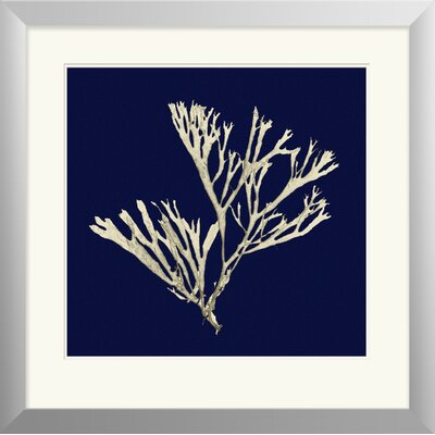 Seaweed on Navy II Framed Painting Print