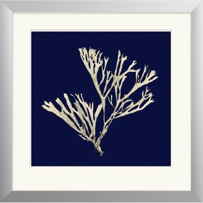 Seaweed on Navy II Framed Painting Print