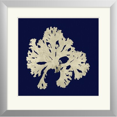 Breakwater Bay Seaweed on Navy IV Framed Painting Print
