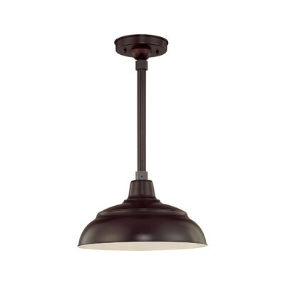 Palmyra 1-Light Outdoor Pendant