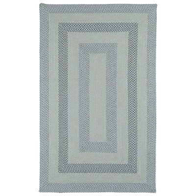 Partridge Hand-Woven Blue Indoor/Outdoor Area Rug Rug Size: Rectangle 9 x 12