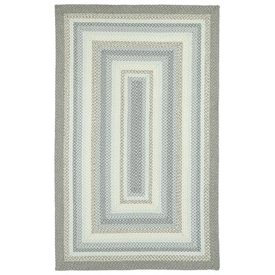 Guillemot Indoor/Outdoor Area Rug Rug Size: 8' x 11'