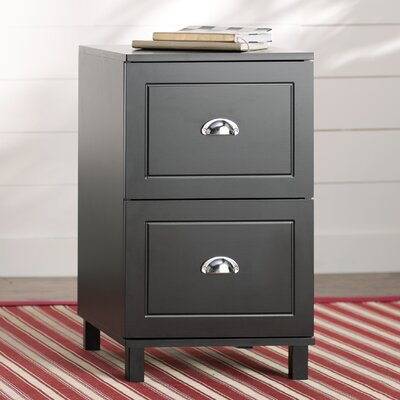 Greylag 2 Drawer Filing Cabinet Finish: Black