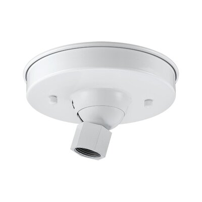 Sally Canopy Kit Sloped Ceiling Adapters Finish: White