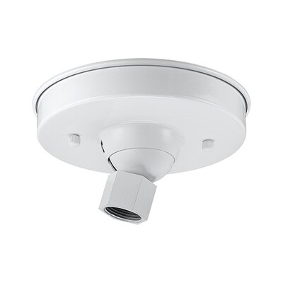 Sally Sloped Ceiling Adapters Finish: White