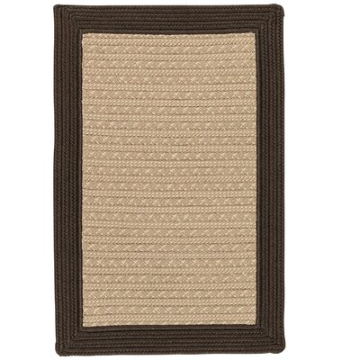 Dartmouth Hand-Woven Brown Indoor/Outdoor Area Rug Rug Size: 4 x 6