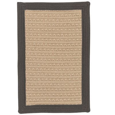 Dartmouth Hand-Woven Gray Indoor/Outdoor Area Rug Rug Size: 4' x 6'