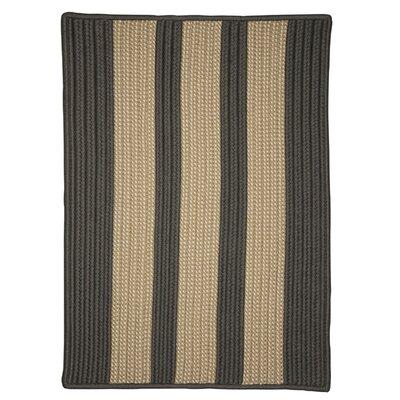 Seal Harbor Hand-Woven Gray Outdoor Area Rug Rug Size: 3 x 5