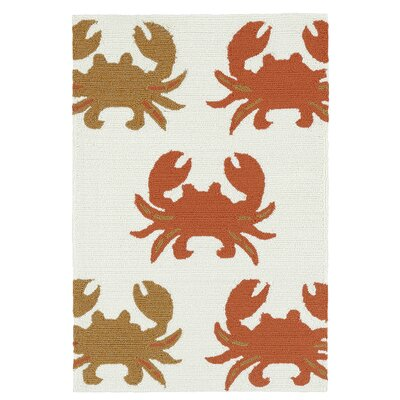 Sereno Handmade Rectangle Indoor / Outdoor Area Rug Rug Size: Rectangle 2 x 3