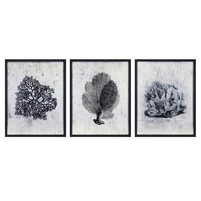 Martinique Coral 3 Piece Framed Graphic Art Set