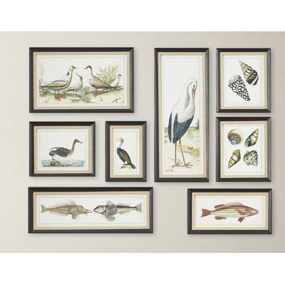 Seashore Collage Prints 8 Piece Framed Painting Print Set