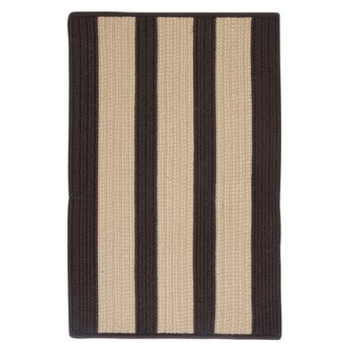 Seal Harbor Brown Indoor/Outdoor Area Rug Rug Size: 2 x 3
