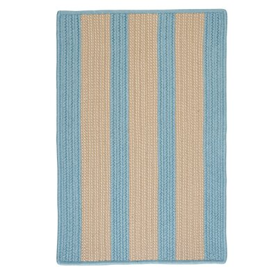 Seal Harbor Light Blue Indoor/Outdoor Area Rug Rug Size: 5 x 8