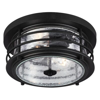Newcastle 2-Light Flush Mount Finish: Black, Bulb Type: 75W A19 Medium