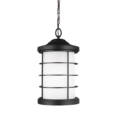 Newcastle 1-Light Mini Pendant Finish: Black