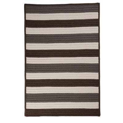 Andover Stone Braided Indoor/Outdoor Area Rug Rug Size: 5 x 8